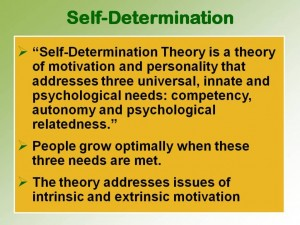 papers on self-determination Self-determination theory is a theory of motivation which posits that humans continually and actively seek challenges and new.
