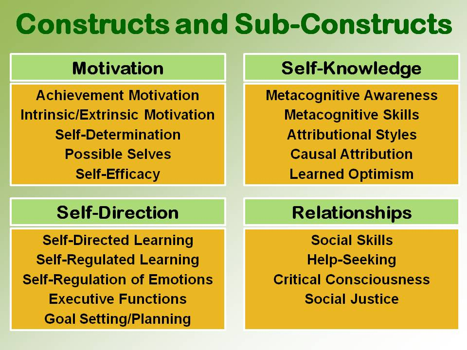 Constructs and Sub-Constructs P